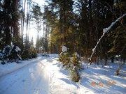 7 250 га в т.ч. 2750 га леса в собственности! - Фото 3
