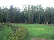 Земельный участок без подряда в Пушкинском районе - Фото 4