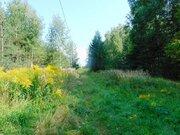 15 сот - ИЖС - д.Дубки - 65 км Щёлковское шоссе - Фото 2