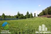 Участок 13.94 га в районе д. Ближнево (г/п Дмитров) - Фото 1