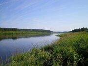 Участок 82 га, первая линия р.Волга, Сосновый лес, газ - Фото 3