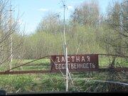 Реально в окружении леса 40 соток земли для дома. - Фото 5