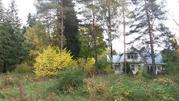 Продаётся лесной участок 44 сотки Солнечногорский район д.Николаевка - Фото 5