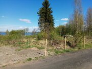 Продается участок 35 соток в поселке Прибылово - Фото 3