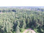 Лесной участок 15 соток д. Осеченки ИЖС - Фото 4