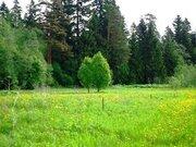 Участок 1 га в Ломоносовском районе крестьянское-фермерское хозяйство