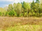 Продажа участка, Дятлово, Заокский район - Фото 2
