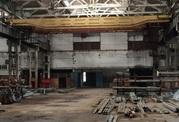 Продам производственно-складской корпус 37 260 кв.м., Продажа производственных помещений в Сосновом Бору, ID объекта - 900231022 - Фото 17