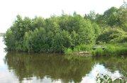 Участок на берегу р. Волга, с лесным массивом, д. Коровино. - Фото 1