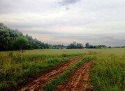 Земельный участок 25 соток д. Беляево Чеховский район - Фото 5