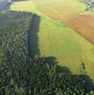 Участок 210 гектаров. Земля расположена в 140 км по Новорижскому - Фото 1