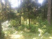Солнечногорск, ул. Матросова 15 соток ИЖС Аренда - Фото 1