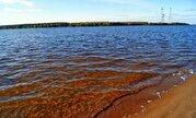 Зеленый район Конаково - Волга, пляжи, сосновый бор - Фото 2