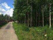 Земельный участок в лесу, 10 соток, Киевское ш, - Фото 2