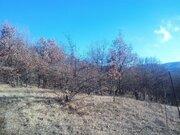 Продается участок 1,22 га в селе Соколиное Бахчисарайского р-на, Крым. - Фото 3