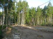 6 соток в 14 км от МКАД по Ленинградскому ш, д.Шемякино, ПМЖ - Фото 3