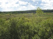 Продается земельный участок,50сот д. Житниково, Сергиево Посадский р-н - Фото 4