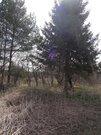 25 соток в деревне Ульево Истринского района (лпх) - Фото 4