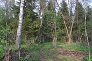 Дача 60 кв.м. на участке 10 соток с выходом в лес, д.Захарово Киржач - Фото 4