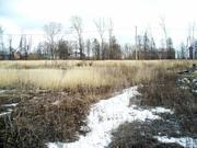 Участок в Щеболово, 15 сот, возможно увеличение - Фото 2
