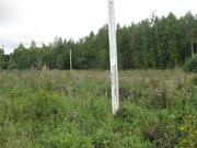 Земельный участок 10 соток в Мошницах - Фото 5