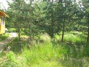 Дача в лесу - Фото 3