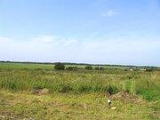 85 га в деревне по Новорижскому земля сельхозназначения - Фото 1