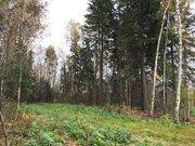 Участок 7 соток, в д. Новинки, 47 км. от МКАД по Дмитровскому шоссе - Фото 3