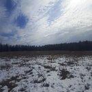 Продам участок 7,42 соток на северо-западе Московской области - Фото 2