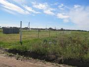 10 сот ИЖС в дер.Аленино - 65 км Щёлковское шоссе - Фото 5