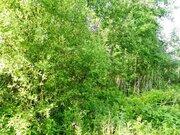 Продажа участка, Мяглово, Всеволожский район - Фото 4