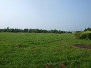 Участок 9 га в деревне Лобаново - Фото 3