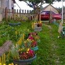 Продажа дома, Ротный Двор, Стругокрасненский район - Фото 2