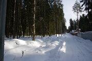 Лесной участок 10 соток в Жаворонках - Фото 4