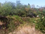 Продажа земельного участка 7.8 соток в Симеизе. - Фото 1