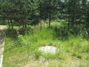 Дача в лесу - Фото 4
