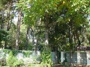Коттедж под ключ в стародачном лесном посёлке Клязьма мкр-н г.Пушкино - Фото 3