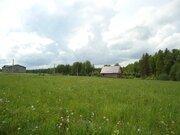 15 соток в деревне Михали, Егорьевского района. - Фото 3
