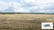 15 соток в деревне Рождественно Шаховского района в 140 км. от МКАД - Фото 3