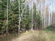 Земельный участок 12 соток 45 км.от МКАД - Фото 5