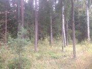 Минское 55 км Дача 100 кв.м под ключ 6 соток. Лес, пруды - Фото 4