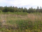 Земельный участок 10 соток в д. Ближнево - Фото 3