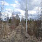 Продам земельный участок в п.Торфяное - Фото 2