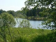 Участок 40 соток на реке Хотча - Фото 2