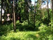 Участок 15 соток п.Ильинский - Фото 1