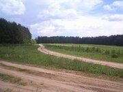 Участок в окружении соснового бора у р. Тьма в 20 км от Твери - Фото 3