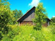 Дом с участком в д. Кожевники, в окружении леса и живой природы. - Фото 5