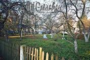 Продается коттедж в самом центре города., Продажа домов и коттеджей в Минске, ID объекта - 501932214 - Фото 4