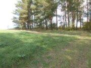 Земельный участок в Московской области - Фото 2