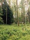 Продам участок д.Ходаево, Чеховский район, Московская область - Фото 1